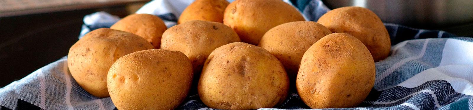¡Atención: Regula los almidones en tu dieta! - Ignifits