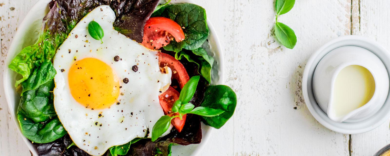 todo sobre una dieta saludable