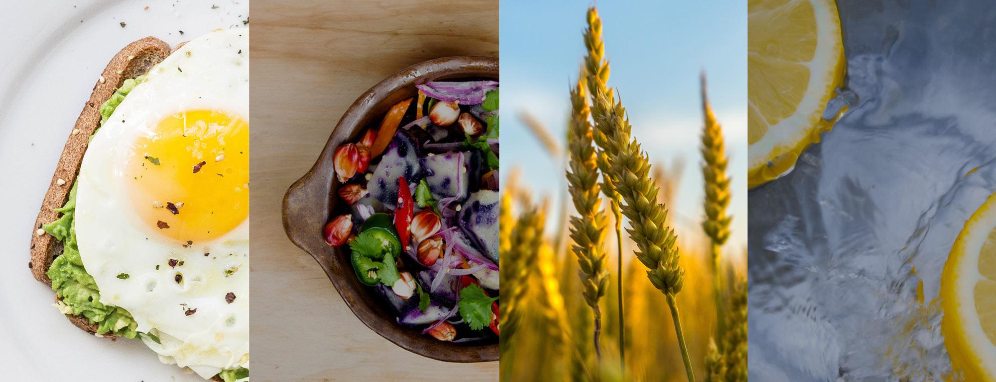 importancia de la nutricion