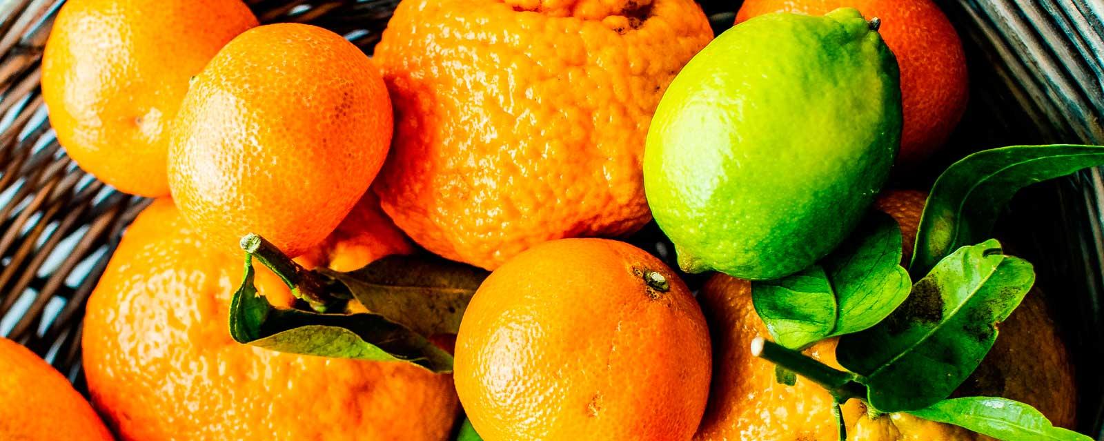 fitoquimicos en los alimentos