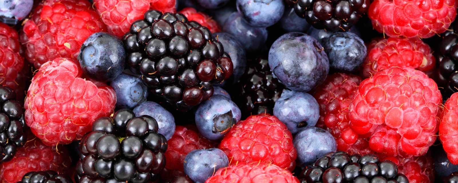 importancia de los carbohidratos fibrosos